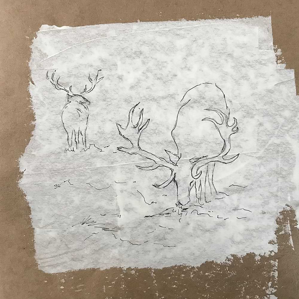 christiane haag kuenstlerin drawing Zeichnung urban deer urban nature art