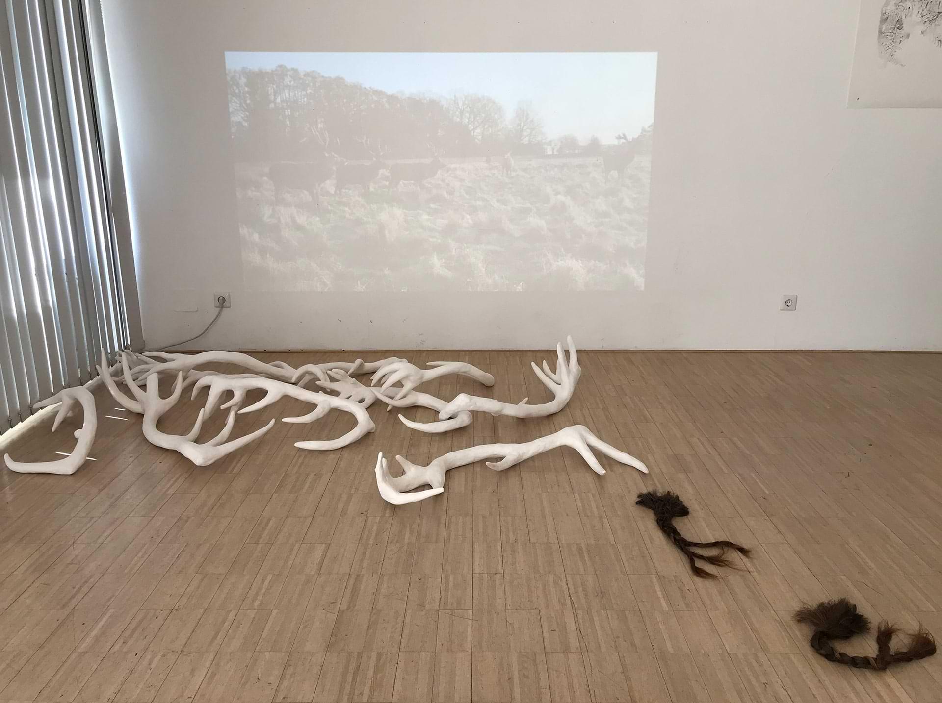 christianehaag-contemplations-urbandeer-gedok-stuttgart-performance-video-urban-landscape-deer-hirsche-malerei-painting-zeichnung--drawing-linoldruck-linoprint--installation-gipsskulpturen
