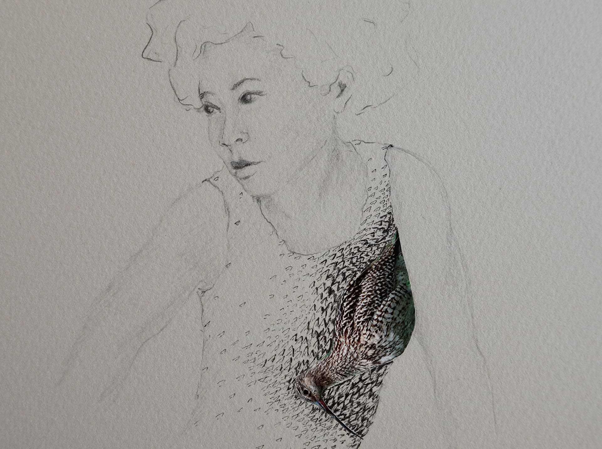 christianehaag-zeichnung-collage-drawing-birds-refugees-gefluechtete-art-20