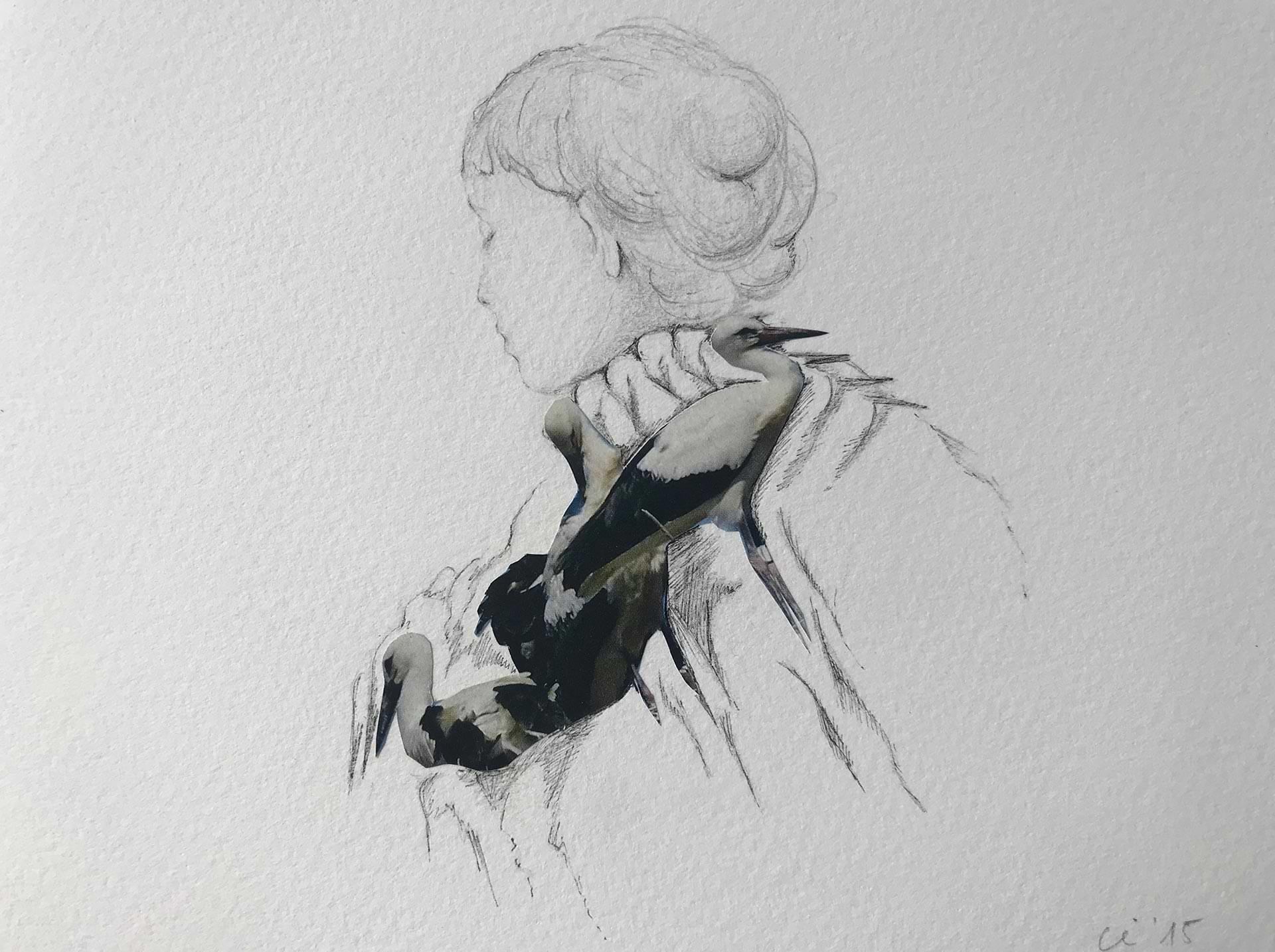 christianehaag-zeichnung-collage-drawing-birds-refugees-gefluechtete-art-28